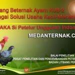 JANAKA Ayam KUB-2 Si Petelur Unggulan Indonesia